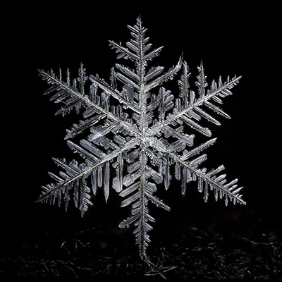 Snowflake 008 Copyright 2015 James A. Rinner